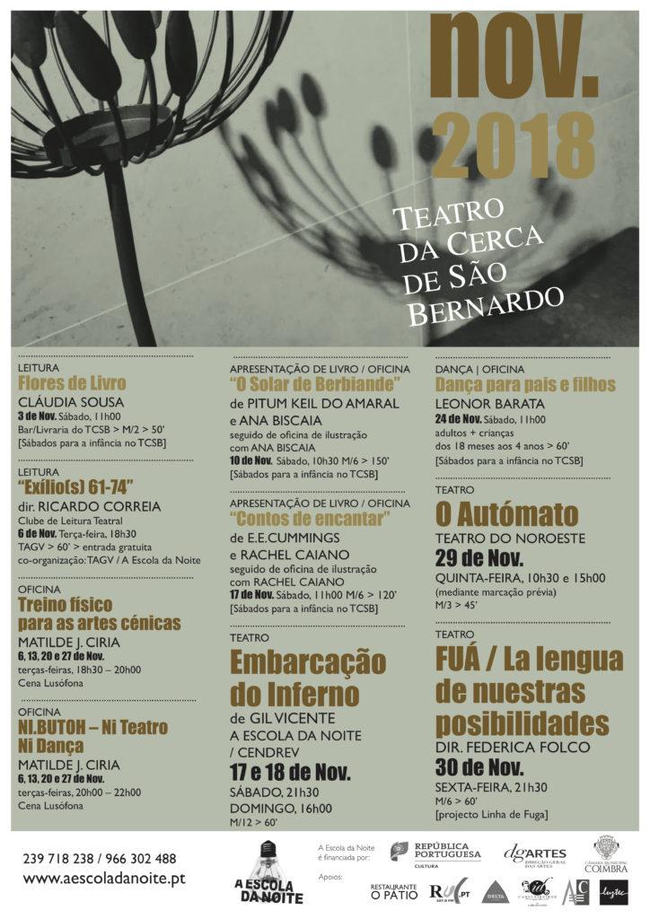 cartaz TCSB 201811