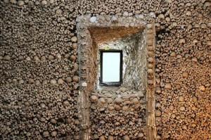 ossos-nicho3